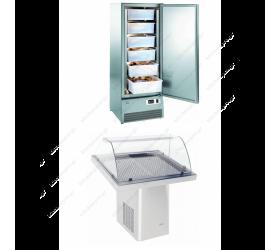 Επαγγελματικά ψυγεία ψαριών